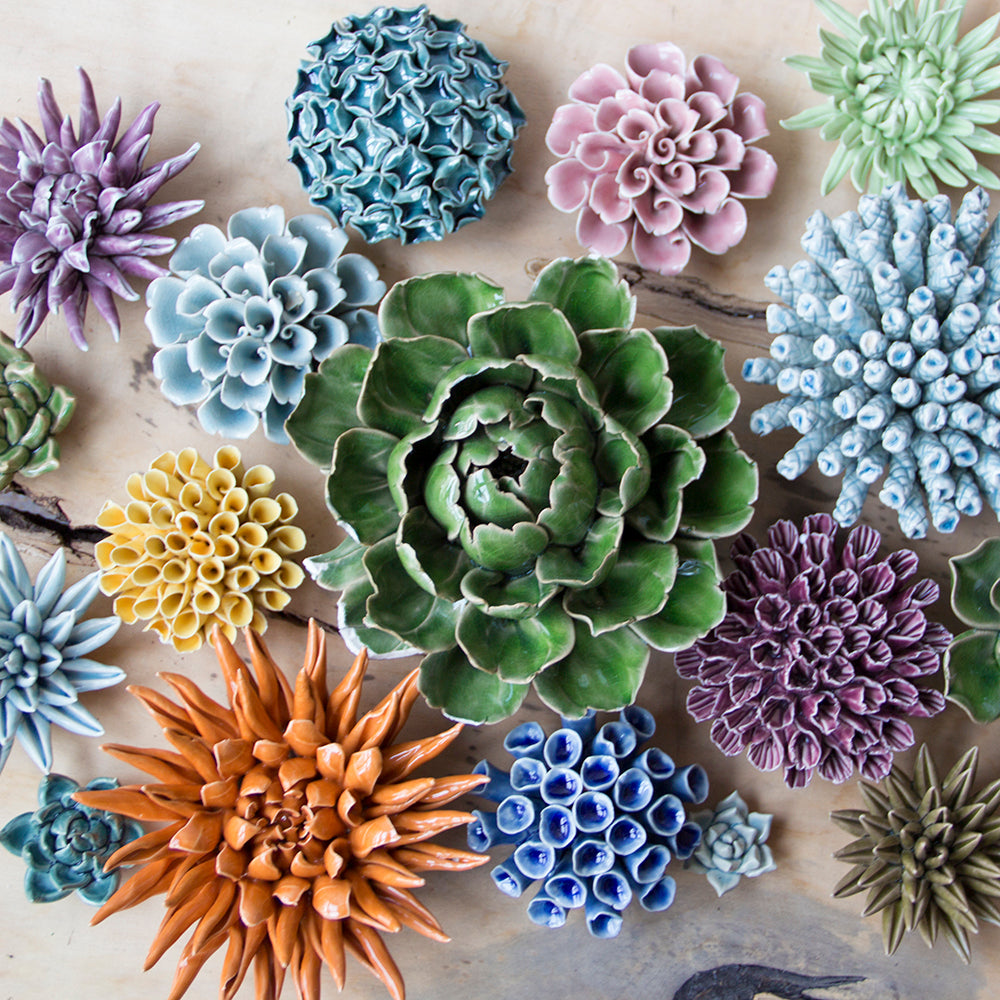 Chive Coral Collection