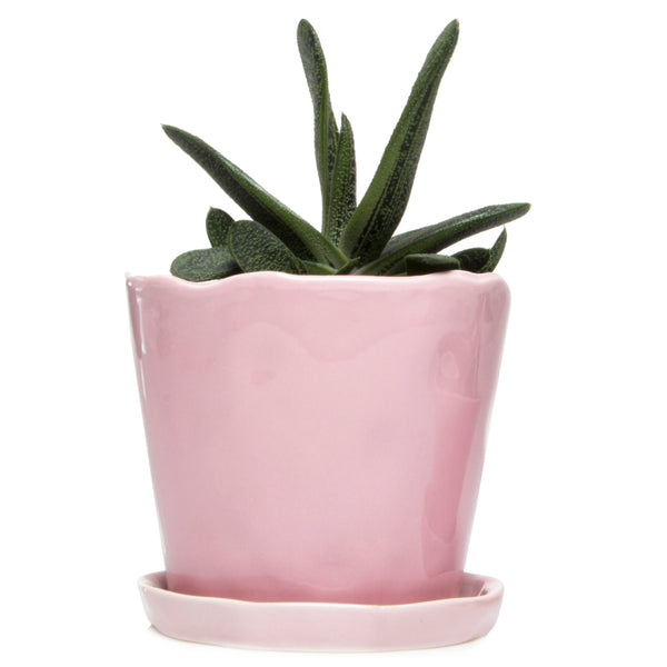 Big Tika Planter - Chive |