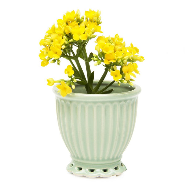 Chive Brilliant Small Mint Decorative Flower Pot