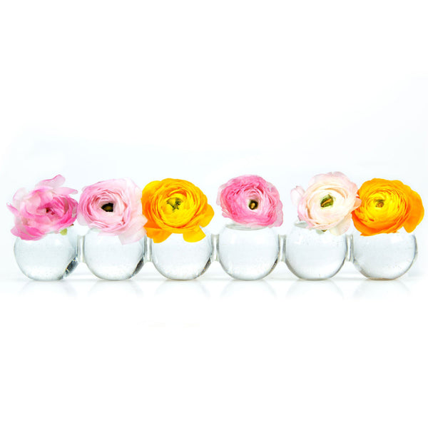 Chive Caterpillar Glass Flower Vases