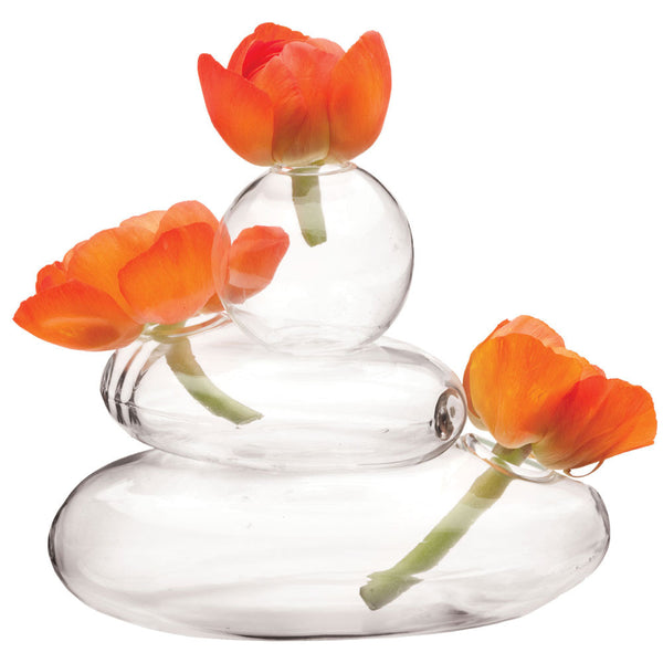 Unique Clear Glass Vases Clear Glass Planters Chive Chive