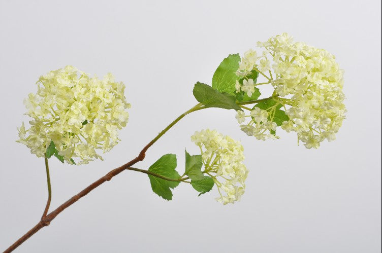 Viburnum | Boule de neige 107cm Light Green