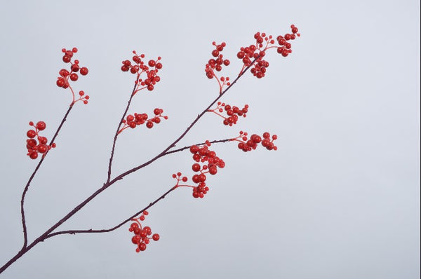 Berries | Baies 84cm Red