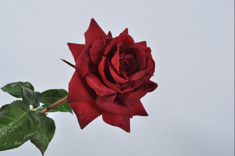 Rose 52cm Red