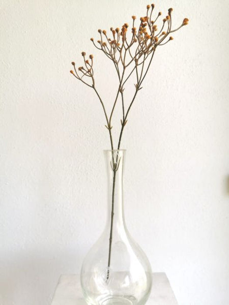 Baby's Breath | Gypsophila 45cm Yellow