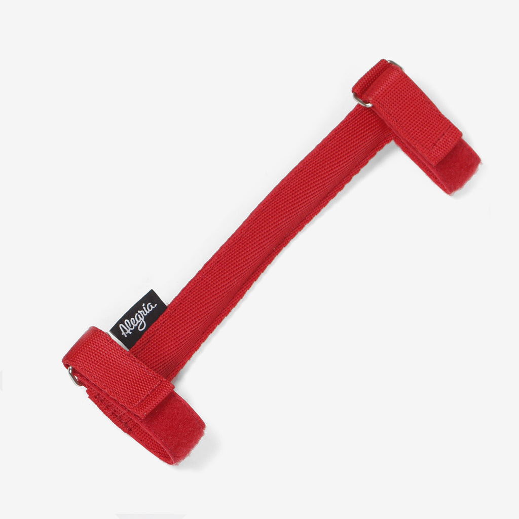 Bicycle Carrying Handle · Red