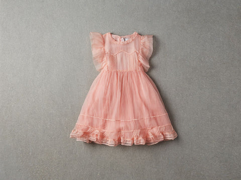 Nellystella Flora Dress in Candy Dust