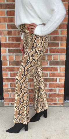 Taupe Snake Print Knit Flare