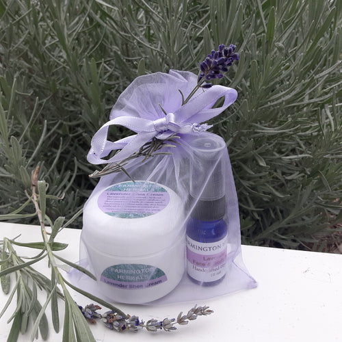 Lavender Shea Cream Gift Set