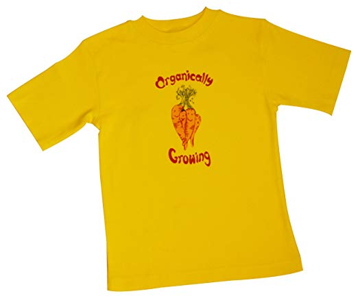 Short Sleeve Organically Growing Tee Yellow Carrot 2-6 Yr