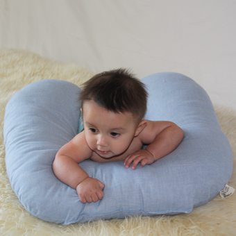 Nursing Pillow EcoWool Fill Organic Cotton Blue Flannel