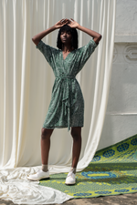 Shaya Dress in Bullfrog by Moonlight