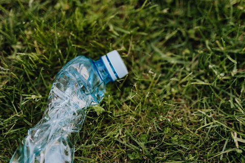 Plastic water bottle sits on patch of green grass