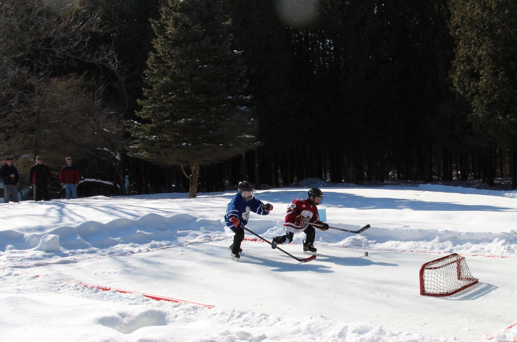 Rink Liners - 20' x 15' - $51 99