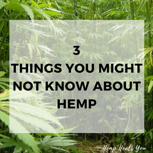 3 Things You Might Not Know About Hemp