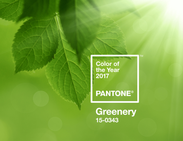 Pantone Announces Color of the Year for 2017: Greenery
