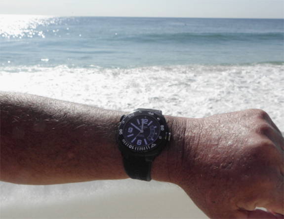 Are You Sure the Watch on Your Wrist Is Ready to Take the Plunge?