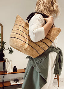 Striped Wing Shopper