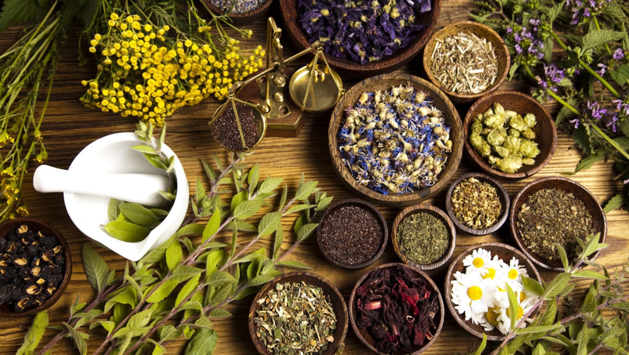 How To Honor Your Herbs: Leaves & Flowers