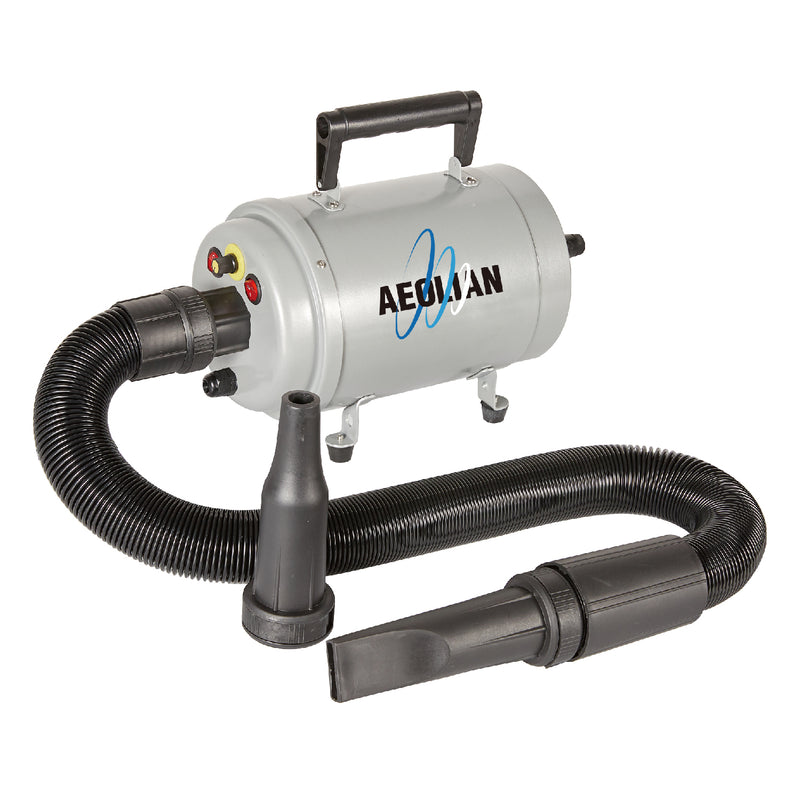 Aeolian Blaster Dryer