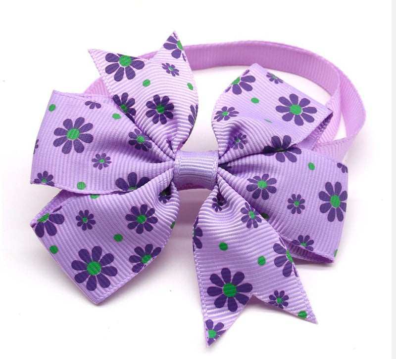 Double Bow Collar- Daisys