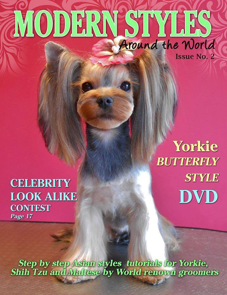Modern Styles Around The World Magazine & DVD- by Olga Zabelinskaya