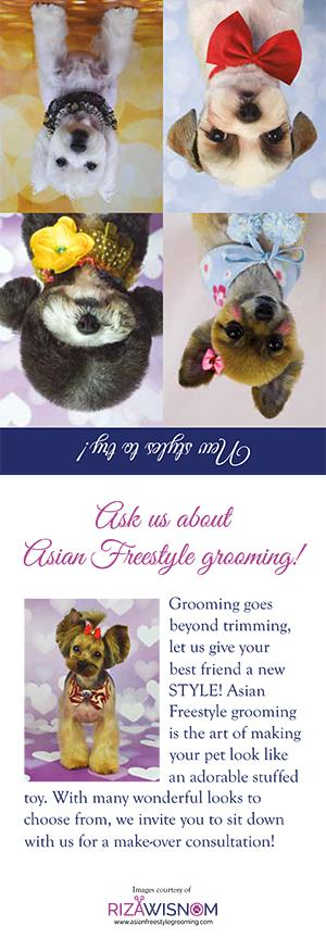 Asian Style Grooming Marketing materials