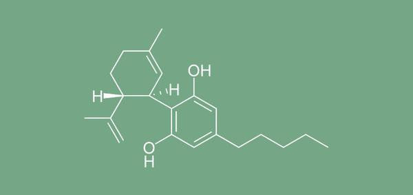 You know about THC, learn more about CBD
