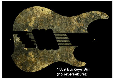 "Dingwall guitars Z3 5 string ""Buckeye burl"""