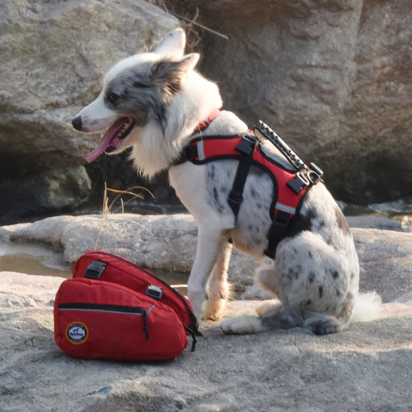 Reflective Dog Backpack Harness