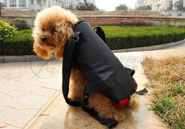 Backpack Pet Carrier - Apparel for Pets