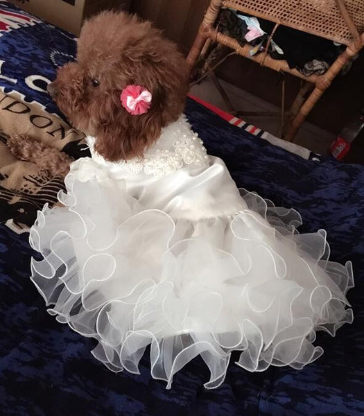 Princess Wedding Dress - Apparel for Pets