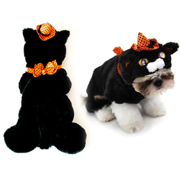 Halloween Kitty  Witch Costume