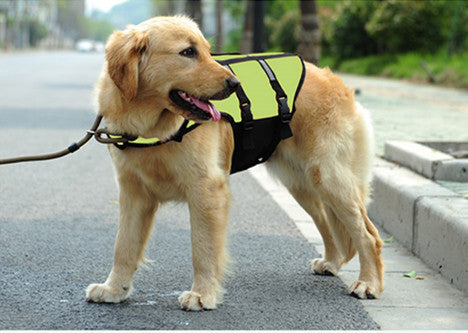 Large Dog Life Jacket - Apparel for Pets