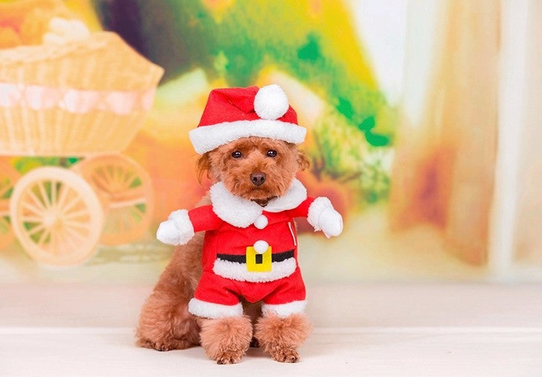 Christmas Santa Claus Outfit - Dog Costumes - Apparel for Pets