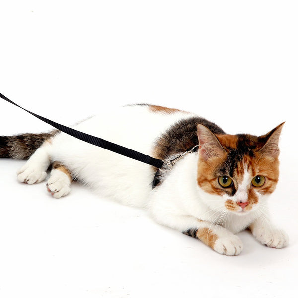 Adjustable Cat Harness - Apparel for Pets