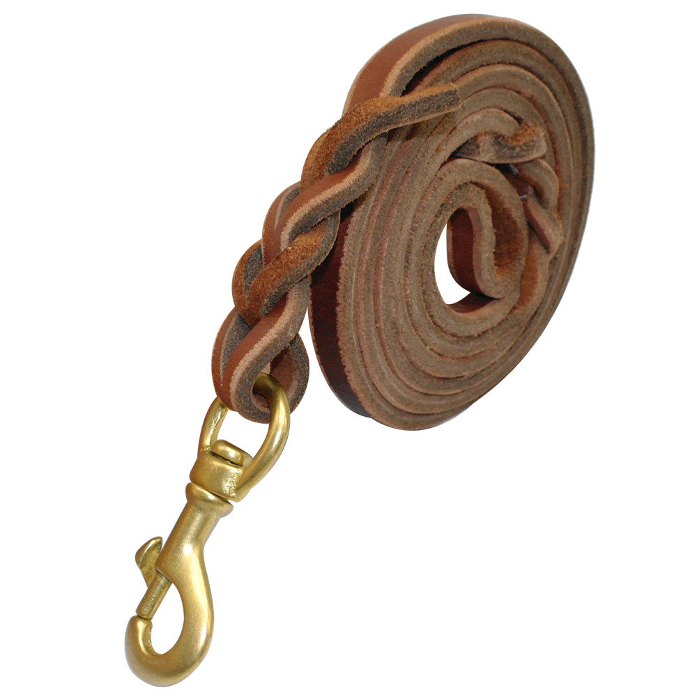 Brown Leather Training Dog Leash