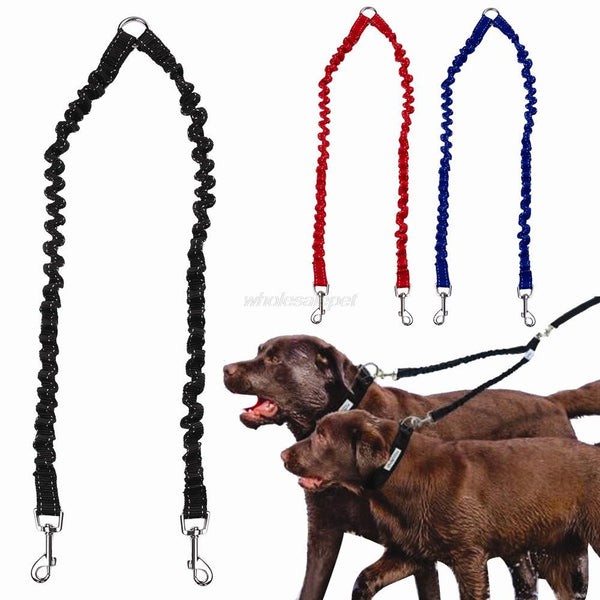Elastic Bungee Double Dog Leash - Apparel for Pets