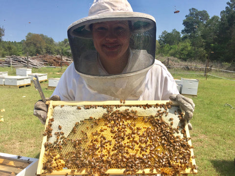beekeeper holding a tray from a hive with many bees attached.