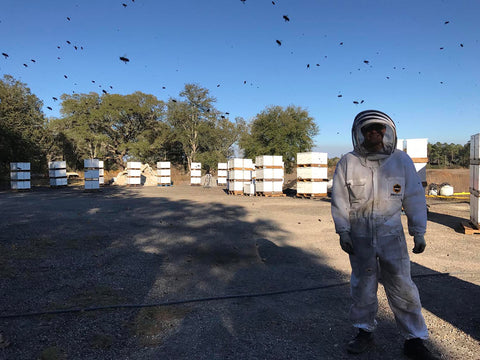 person in a beekeepers suit with hives in the background