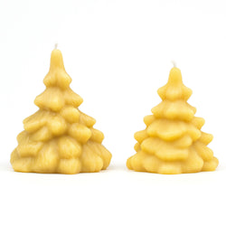 Small  and large spruce tree beeswax candles.