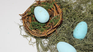 DIY Speckled Robins Eggs