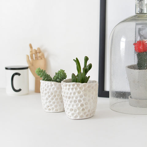 diy clay succulent planter