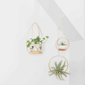 Hanging Planter Shelf Trio