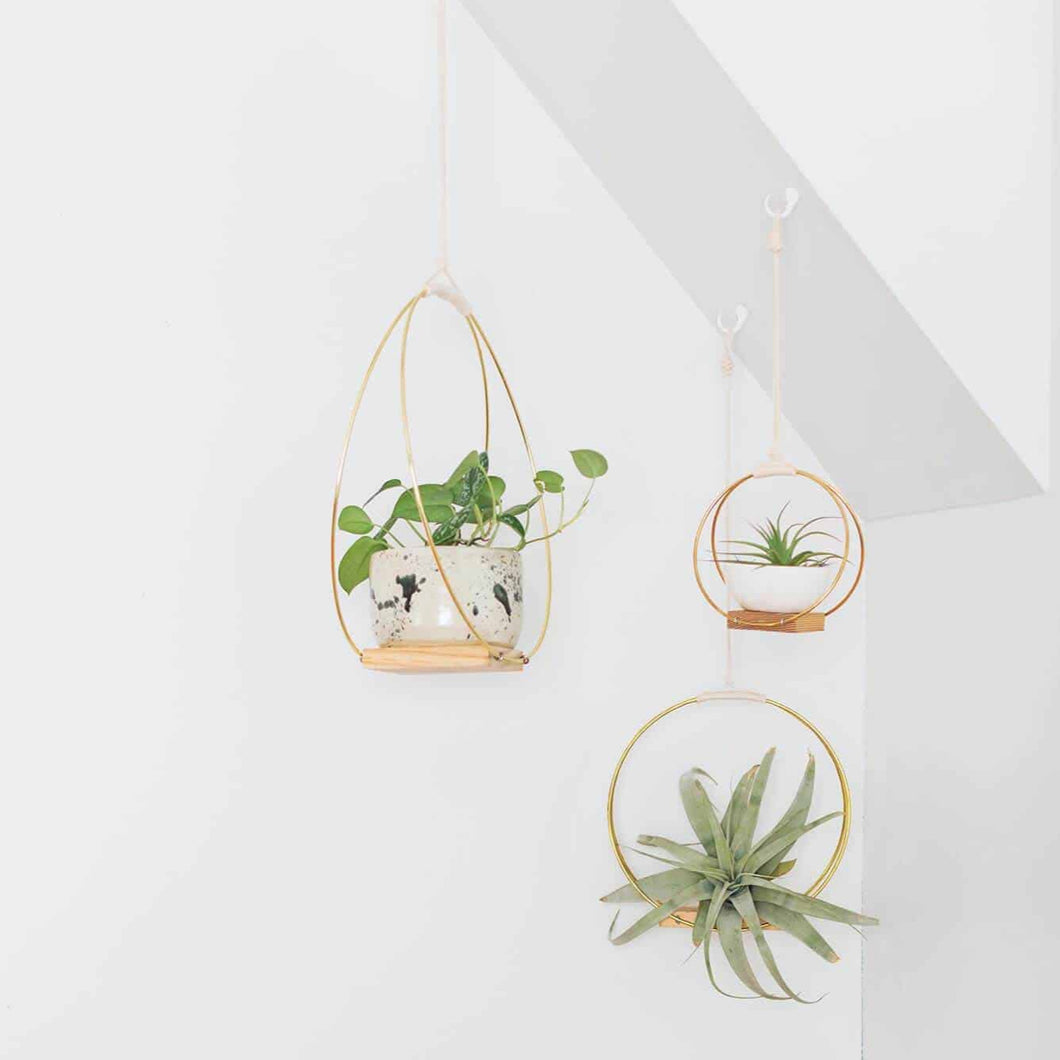 This Month's Project: Hanging Planter Shelf Trio