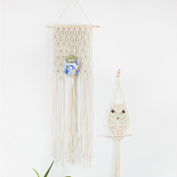 Macrame Project Kit: Macrame Succulent Hanger and a Macrame Owl