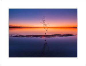 John Taggart Landscapes|Irish  Fine Art Landscape Photography|Lough Neagh