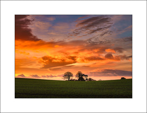 Sunrise at Seaforde Co Down by Irish Landscape Photographer John Taggart