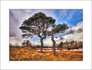landscape photography of Scotland at Loch Tulla