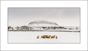 John Taggart Landscapes|Irish & Scottish Fine Art Landscape Photography|Slemish
